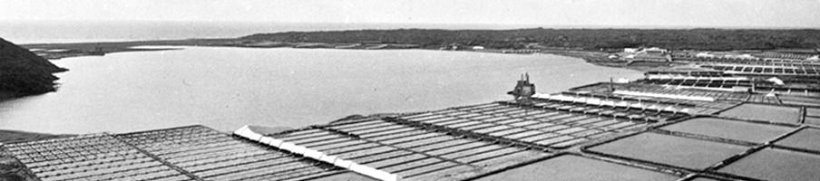 La Historia de Salinas de Janubio
